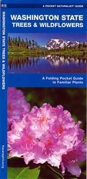 A Pocket Naturalist Guide To Washington State Trees Wildflowers